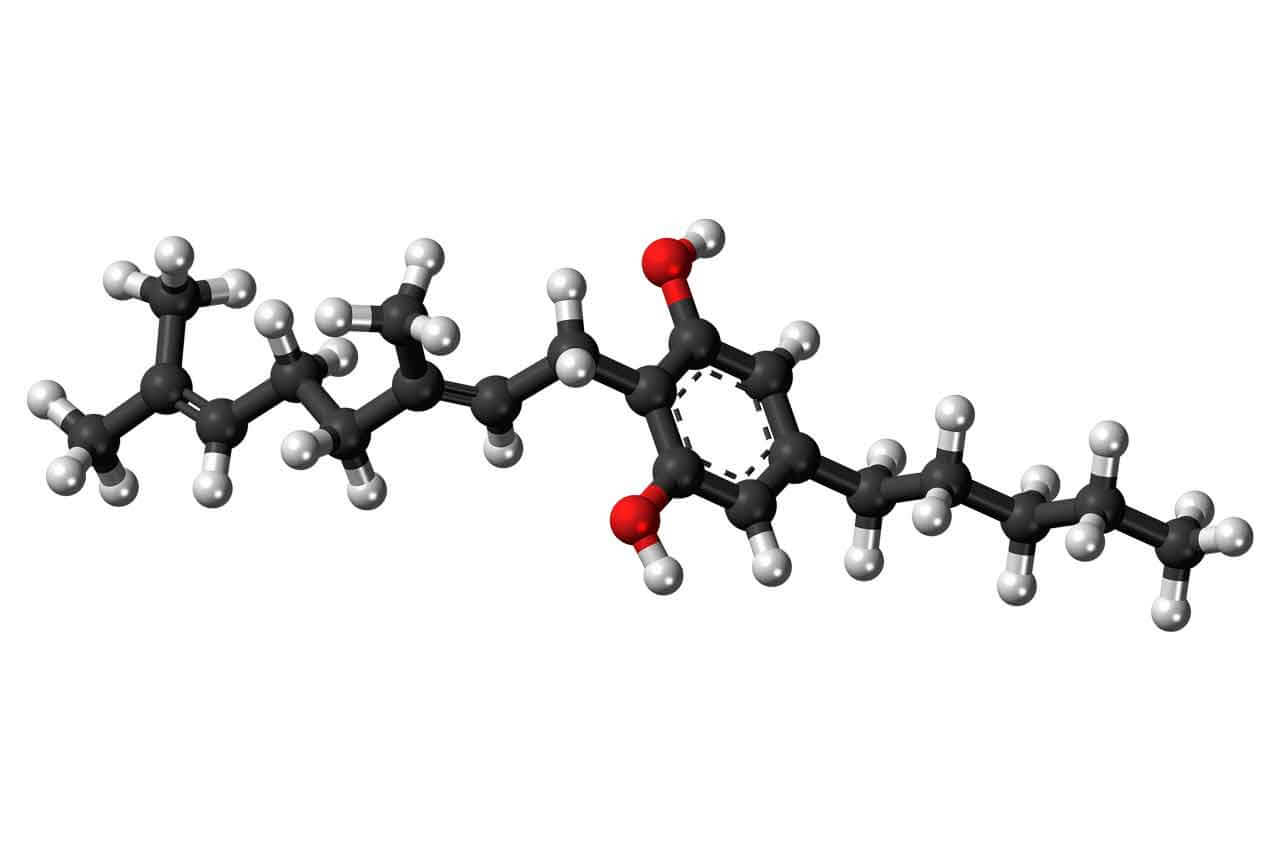 Cannabinoïde_Cannabigerol
