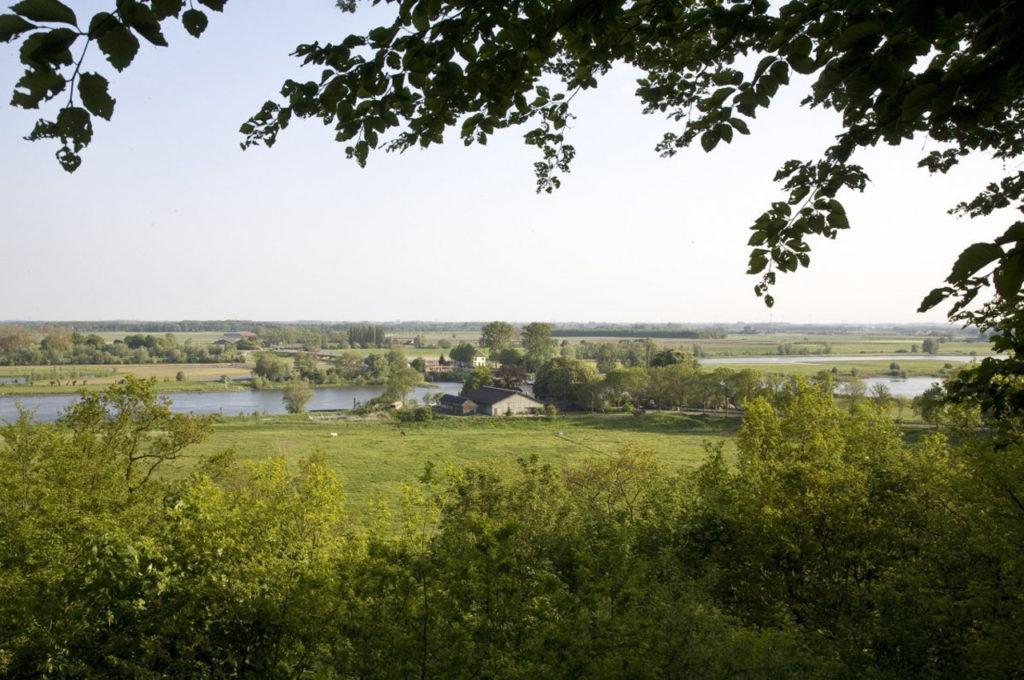 2C-I-en-het-verloren-arboretum