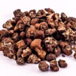 truffels-mexicana-tripreport
