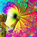 Ayahuasca-helende-achtbaan-emoties-tripreport