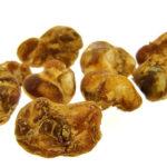 truffels-eerste-keer